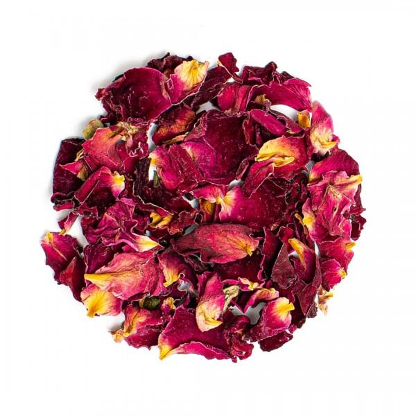Rosenblüten, rot