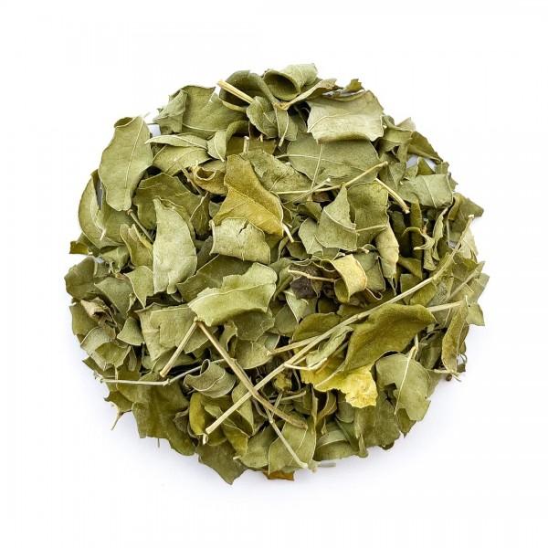 Moringa - ganze Blätter