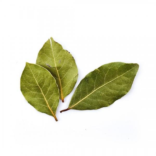 Lorbeerblätter, extra große Blätter