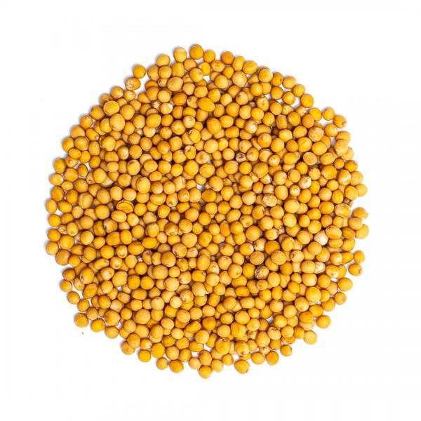 Senfkörner, gelb